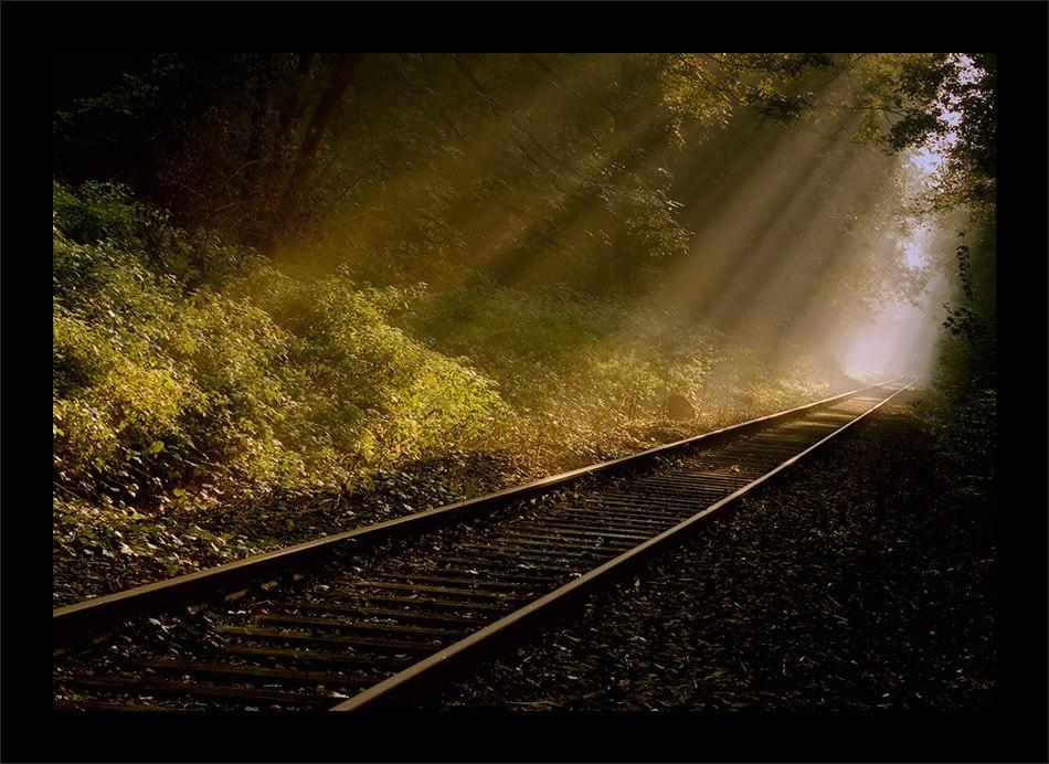 linia kolej