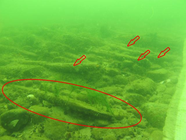 bron z Bałtyku
